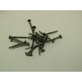"Nails 3/4"" Coated 1/2lb"