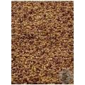 Pollinator Seed Mix 6lb bag