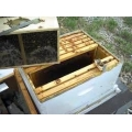 Honey Bees - Packages 2lbs