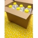 Packing Carton - Fits 6- 5lb or 3 lb Jugs per Box